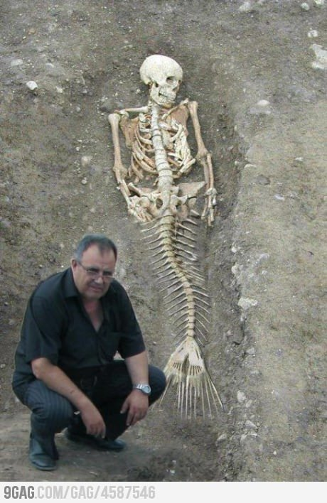 ragecomics4you:  Meanwhile in Bulgaria: We have mermaid!