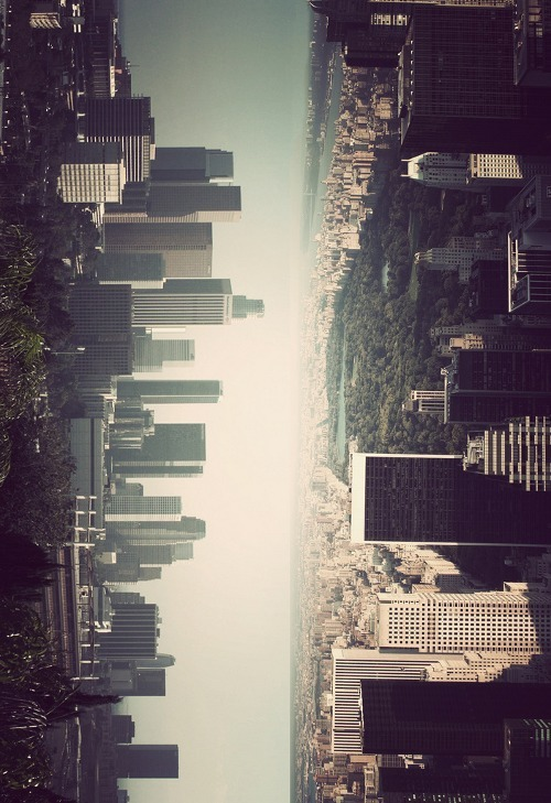 cop-top:  NY and LA Skylines