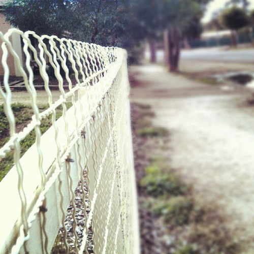 Come to my side of the fence. (Taken with Instagram)