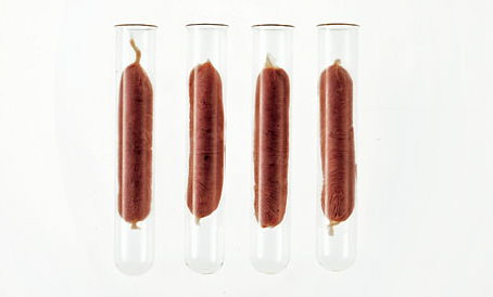 "The synthetic meat of the future. kateoplis:  Fake meat: is science fiction on the verge of becoming fact? | Guardian  Professor Patrick Brown could easily be taken for a deranged visionary. He is intense, driven and unfazed by critics and rivals. This 57-year-old ultra-lean, sandal-wearing, marathon-running vegan wants to stop the world eating meat. Not through persuasion or coercion, but by offering us carnivores something better for the same price or less. […] Brown, a specialist in the genetics of cancer, is a tenured Stanford University molecular biologist, a member of the National Academy and the founder of a non-profit academic publisher. For two years, he has been working on creating synthesised meat and dairy products. ""I have zero interest in making a new food just for vegans,"" Brown says. ""I am making a food for people who are comfortable eating meat and who want to continue eating meat. I want to reduce the human footprint on this planet by 50%."" What Brown is talking about is a revolution that will remake our relationship with our planet, and with our fellow animals. Eating meat is bad for the environment, of that there is no doubt. And the moral arguments against killing animals are compelling. Humans currently slaughter about 1,600 mammals and birds every second for food – that is half a trillion lives a year, plus trillions more fish, crustaceans and molluscs. The total biomass of all the world's livestock is almost exactly twice that of humanity itself. And while crops that feed people cover just 4% of the Earth's usable surface (land that is not covered by ice or water, or is bare rock), animal pastureland accounts for a full 30%. Our meat, in other words, weighs twice as much as we do and takes seven times as much land to grow. And we are going to have to feed a lot more people in the coming decades. The world's population stands at a little over 7bn; by 2060 this will have risen to perhaps 9.5bn, and that is a fairly optimistic scenario. Not only are there more and more of us, but we are eating more and more meat. Demand for it is expected to double by 2050. The market in chicken, pig, cattle and sheep flesh is worth about $1trn a year. By mid-century this will more than double, perhaps triple at today's prices, as the cost of land rises. This is bad news for the Earth. Meat production accounts for about 5% of global CO2 emissions, 40% of methane emissions and 40% of various nitrogen oxides. If meat production doubles, by the late 2040s cows, pigs, sheep and chickens will be responsible for about half as much climate change impact as all the world's cars, trucks and aircraft. But it is animal suffering that usually turns people vegetarian. Meat farming is, say its critics, an obsolete technology that produces a nutrient-dense food in just about the most inefficient (and cruel) way imaginable. The problem – the big problem – is that, when given a choice, most of us like to eat meat regardless. It may be inefficient, dirty and cruel, but there is no denying that cooked animal flesh tastes good.  Read on."