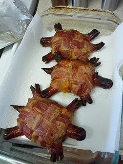 funfoever:  fail turtles! (via We need more fun for our boring life | TheFailBlog.org)