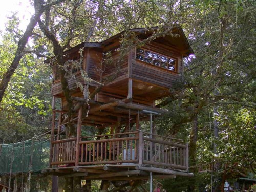 Putting this on my list of places I want to go. It's a treehouse resort in Oregon that seems to be reasonably priced. A two person room is as low as $120/night in the summer. And it's not just the tricked out treehouse I always wished I had as a kid. It also has a series of zip lines throughout the property.  We had a tree in my backyard when I was young that had a branch about ten feet off the ground that created the perfect nook for me to sit. I used to climb on top of our monkey bars and fit into that little cradle with a blanket and a book and disappear into my own world for a few hours. I'd love to visit this resort in Oregon and get lost in the trees again. I'll let you know when I make it there!
