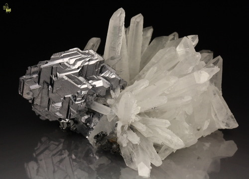Galena - spinel law twin, Quartz    Krushev dol mine, Madan ore field, Rhodope Mts, Smolyan Oblast, Bulgaria