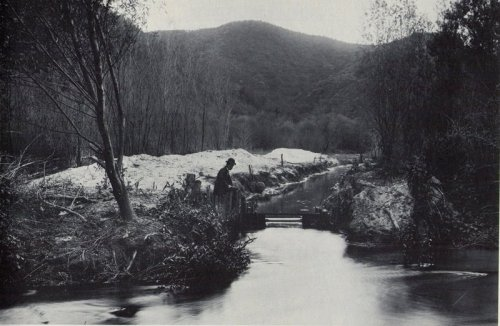 The L.A. River running through Griffith Park in 1910.