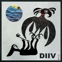 The side project of Beach Fossils' Zachary Cole Smith, DIIV has the nectar of its predecessors running through its lo-fi veins. (via FILTER Magazine - Reviews - DIIV)