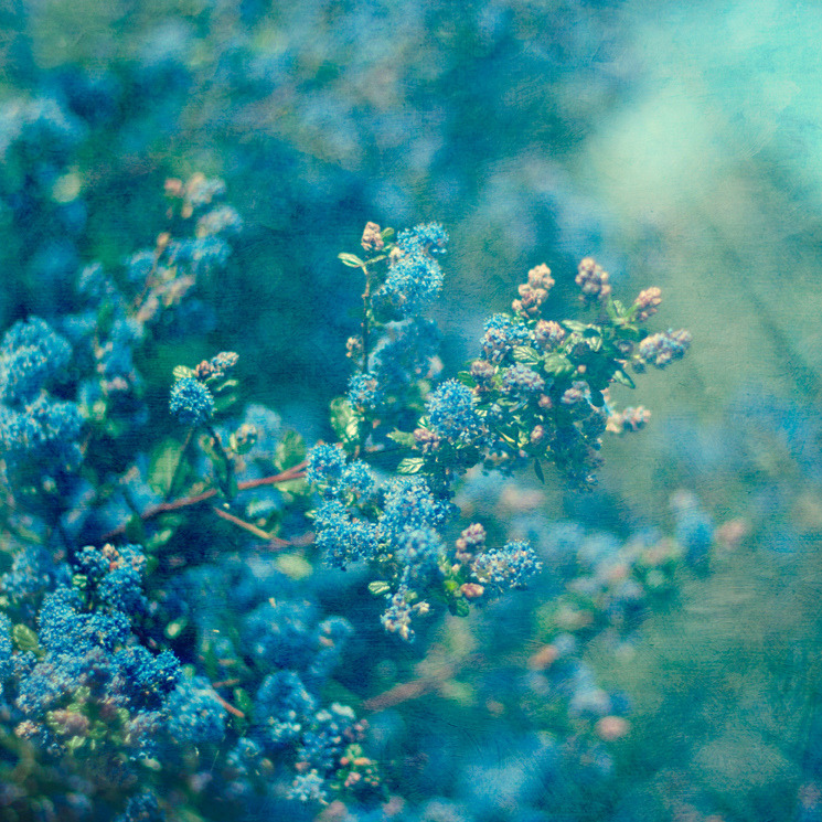 robot-heart:  blue mood (by borealnz)