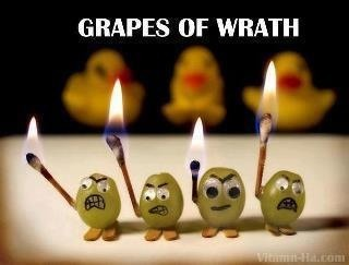 Angry grapes!