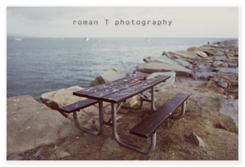 © roman T photography - All rights reserved. (reblogging OK, with all contents intact)