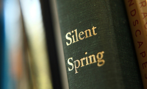 "theatlantic:  Rachel Carson's Silent Spring Turns 50  Fifty years ago this month The New Yorker began publishing Rachel Carson's Silent Spring. A series of three articles — excerpts from the book that would be published that September — appeared on June 16, 23, and 30, 1962. Under the banner of ""A Reporter at Large,"" Carson's account of environmental peril resulting from the overabundant use of petrochemical-based pesticides unfolded between cartoons and genteel ads for airlines, tasteful upscale merchandise, hotels, and restaurants. It's impossible for anyone not then an adult to imagine what it would have been like to read these pieces in 1962, a time when such chemicals were generally regarded as a modern miracle for home gardeners and industrial agriculture alike. ""We thought these things were safe,"" said my mother, who read Silent Spring as it rolled out in The New Yorker. Reading Silent Spring today, it is disquieting to realize how much was already known in 1962 about the environmental health impacts of petrochemicals. Even more shocking is to recognize how little our regulatory response to these chemicals' effects has changed, despite the past five decades' great advances in scientific understanding. Read more. [Image: Sterling College/Flickr]"