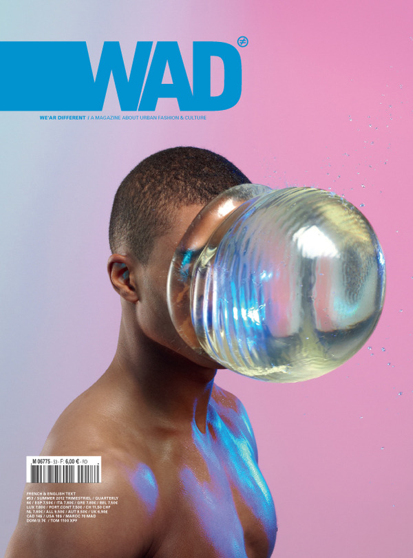 Cover by Romain Laurent