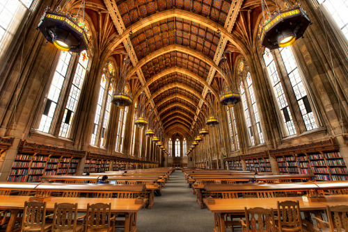becausetheinternet:  An amazing shot of a beautiful library.