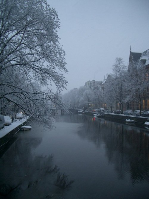 mydearmilo:  winter in Amsterdam. Date: March 2005