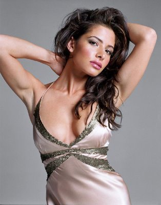 Carmen from the L Word (Sarah Shahi)