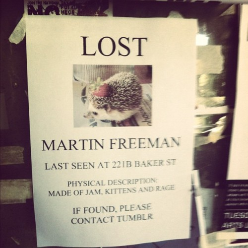 fkyeahcaitlin:  Found this on a poster board at uni #martinfreeman #tumblr #sherlock #watson (Taken with Instagram)