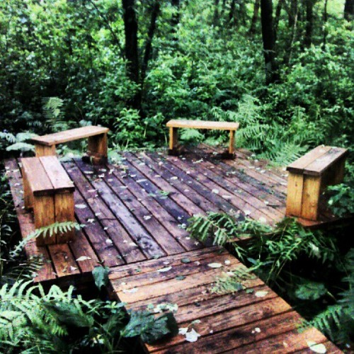 And they even had a nice little sitting area right off the swamp-bridge. Y'know, so you can sit in peace while you're eaten alive by those monster-mosquitoes-that-sound-like-small-aircraft that wouldn't leave me alone… (Taken with Instagram)