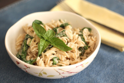 gastrogirl:  creamy parmesan pasta with spinach and basil.
