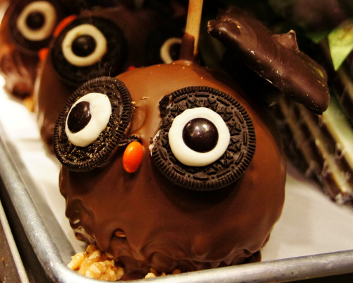 evilrainbowcupcakes:  cakeapothecary:  Candy Apple Owl (by sea turtle)  aaaaawww