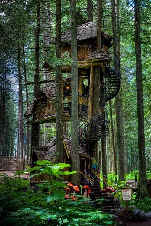 Three Story Treehouse, British Columbia, Canada photo via dirty