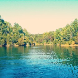 #lake #trees #pond #private #property #water #beautiful #home #summer  (Taken with Instagram)