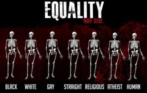 Equality.  Follow me at http://genoindeed.tumblr.com for funny pics, I'll follow back!