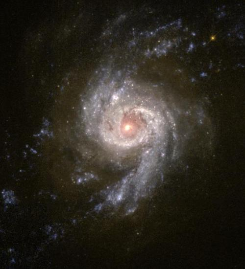 the-astronomyblog:  Starburst Galaxy NGC 3310 Blazes With Star Formation
