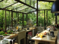 Wow, a kitchen in a greenhouse! Want this!