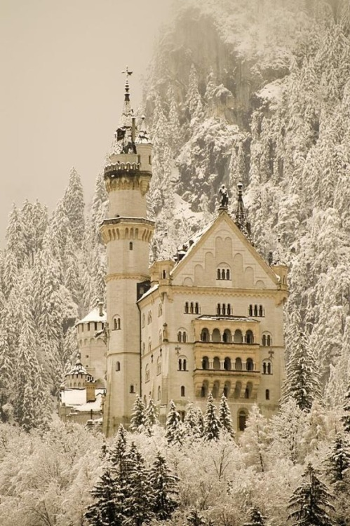 toonvmi:   Neuschwanstein Castle, Germany
