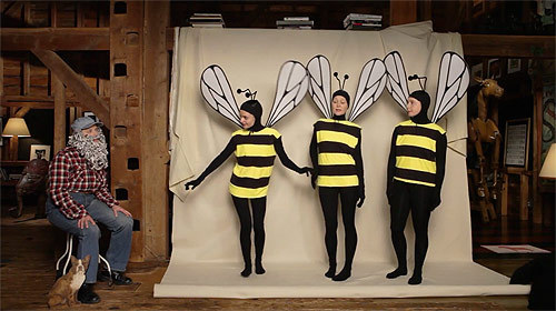 Educational films about bees by Isabella Rossellini, from BOOOOOOOM! http://bit.ly/LMRZoJ