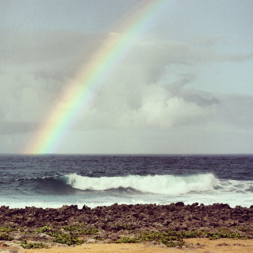 North Shore of Oahu, Hawaii in December 2011. Double rainbow! I think I chopped the lighter one out when i was editing. I am pretty iffy on the edits I did in Instagram on this photo…the sky looks so strange and grainy. As beautiful as this photo is without any edits, I think I need to suck it up and head to photoshop with it.