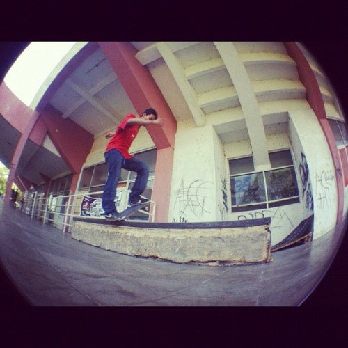 Smooth nosebluntslide 😍😍😍 #skateboard #sunday #forfun #nosebluntslide  (Taken with Instagram)