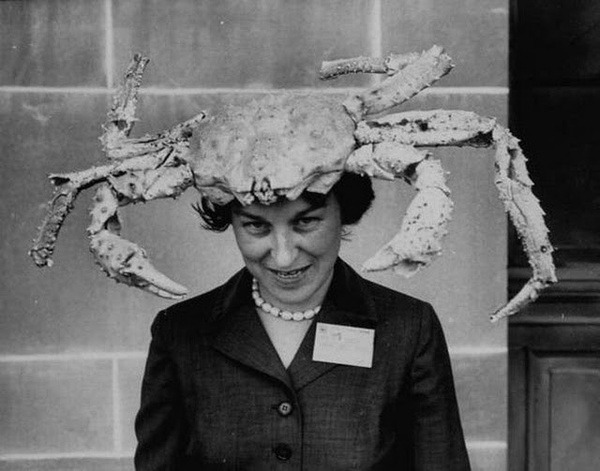 retrogasm:  She just might have the crabs…
