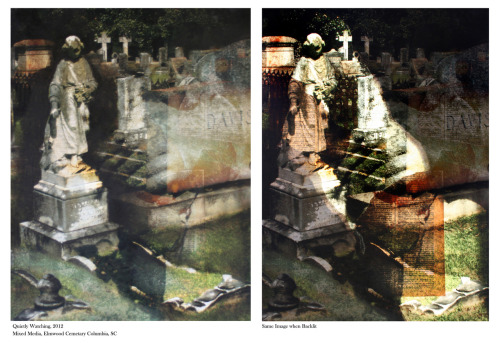 More backlit images from southeastern cemeteries, summer 2012 Claudia WIlburn