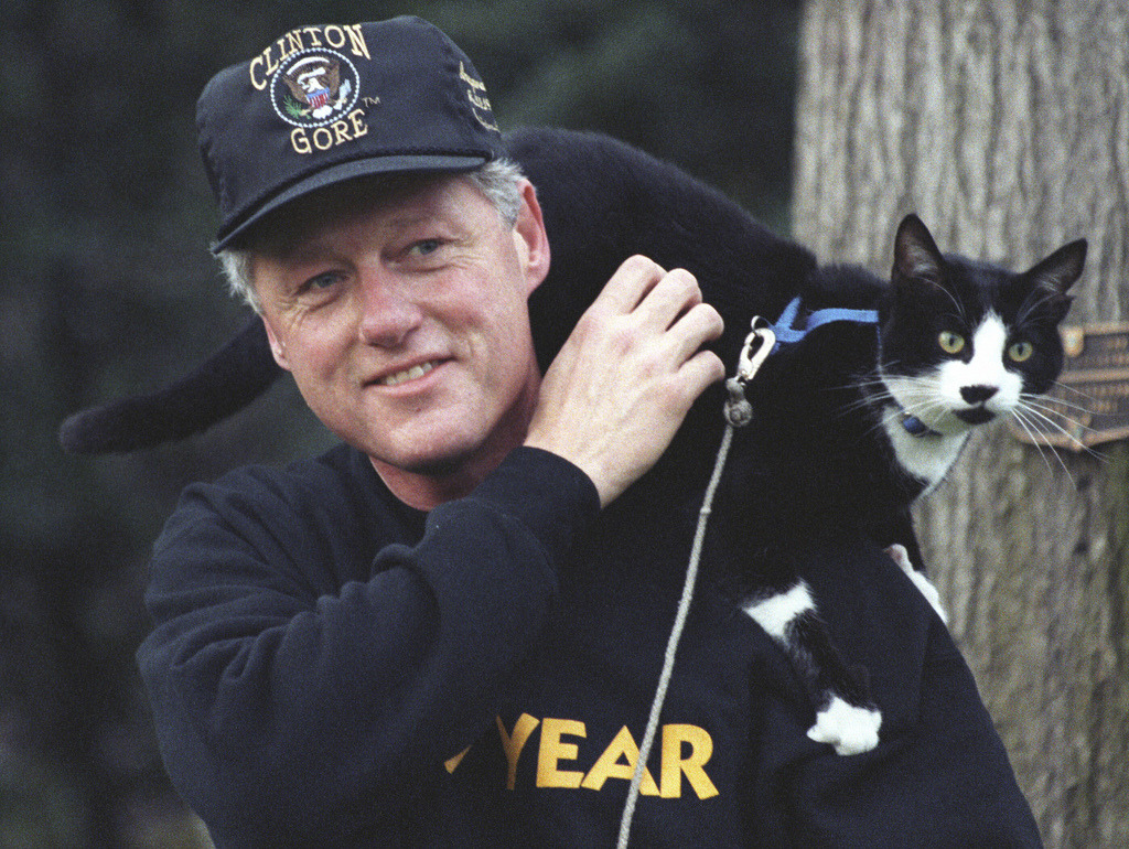 Socks the Cat perched on President Clinton's shoulder: 12/20/1993 Photo by ©The U.S. National Archives