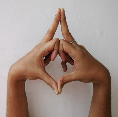 Kalesvara Mudra – mudra for changing character traits and overcoming addictions  Kalesvara Mudra is dedicated to the lord of time.  Kalesvara Mudra helps us by clearing conflicting thoughts and making us calmer. It helps us in contemplating and observing our character, addictions and behavior over time, opening the door for change. Kalesvara Mudra can be practiced by anyone desiring change. It should be practiced for at least 15 -20 minutes.  To do Kalesvara mudra, join the middle fingers together as indicated. Touch the first two joints of the index fingers and touch your thumbs. Bend the remaining fingers inward. Point your thumbs toward your chest and spread your elbows to the outside. Observe your breath and lengthen the pause after inhalation and after exhalation.  Focus on the addiction you want to quit or change you want to make, and imagine it already happening.