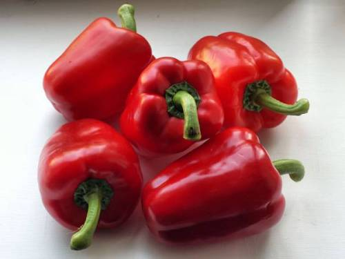 Red Peppers - Good for you!!! Did you know that a cup of sliced raw green bell pepper contains 12% of your daily value (DV) for provitamin A, but an equivalent cup of sliced red bell peppers contains 104% DV! Red bell peppers provide both color and taste to your meals, along with plenty of both vitamins C and pro-vitamin A. They are also a concentrated source of carotenoid phytonutrients that provide powerful antioxidant protection against the oxidative damage to cells caused by free radicals. Free radicals play a major role in the cholesterol build-up associated with the increased risk of heart disease, the nerve and blood vessel damage seen in diabetes, the cloudy lenses of cataracts, and the joint pain and damage seen in arthritis. The lycopene and beta-cryptoxanthin found in red bell peppers are associated with promoting a healthy heart and lungs, while theirlutein and zeaxanthin promote vision health.