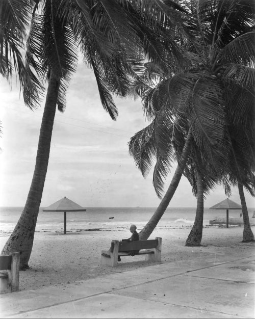 npr:  oldflorida:  Just let me sit and watch the surf come in. Key West, 1948.  Living by the sea is just the best. —Wright