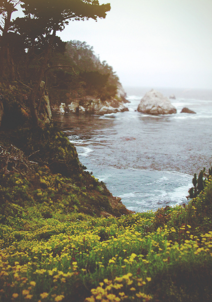 just-breezy:  The West (by Dangerous…Dan)