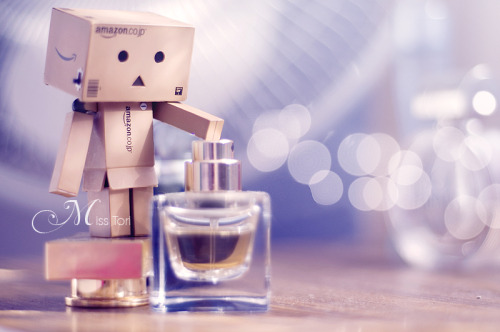 Danbo Perfume SmellingBuy Discounted Fragrances