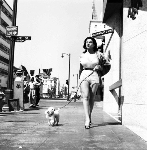 Joan Bradshaw walks her pooch on Hollywood & Vine, 1957