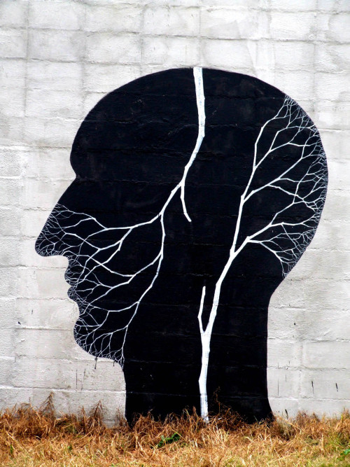 synaesthesian:  Street Art by Pablo and David