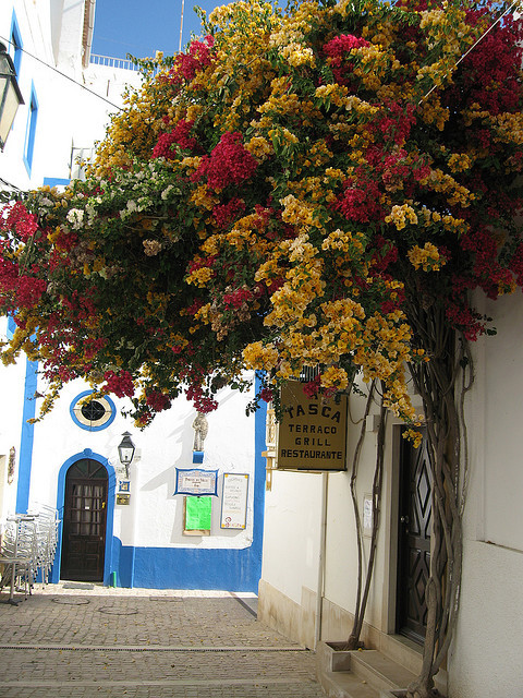 visitheworld:  A walk in the old town, Albufeira, Portugal (by Bexy87).