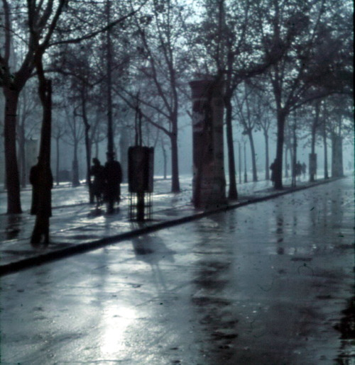 The Andrássy Avenue in the rain, 1940 by Lajos Hollán