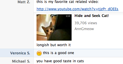 "bestvendor:  ""You have good taste in cats.""  I laughed at this for a good 5 minutes."