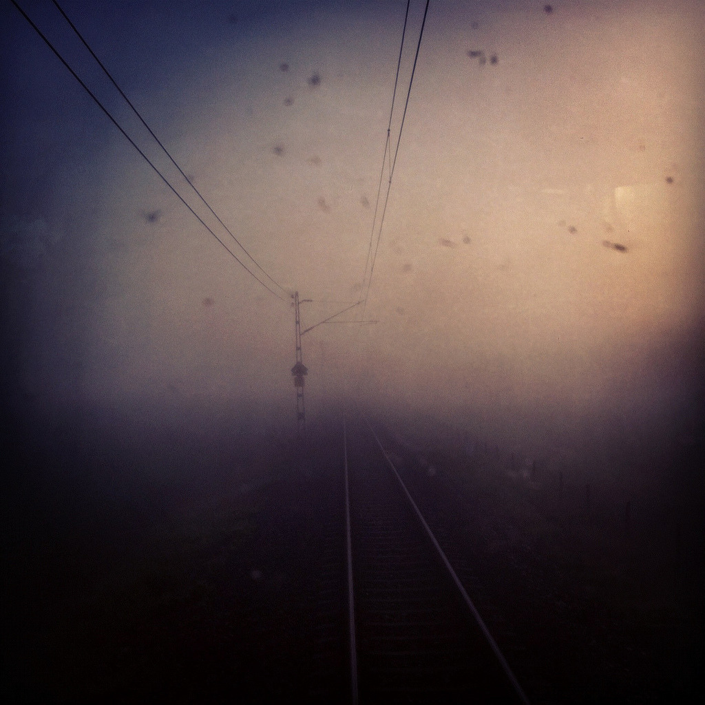 I have started my internship as a train driver. It was very much fog over the river a few days ago and the window was covered with insects which pattered like rain.  I'm sannahkvist on instagram.