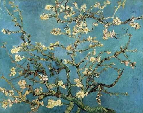 pffttyoubet:  Almond Branches in Bloom - Vincent van Gogh