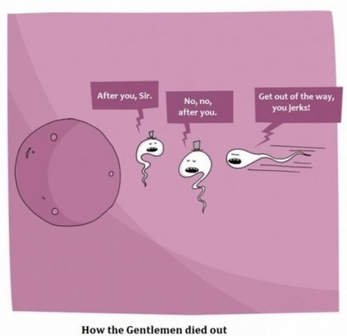 alessandrocagliostro:  how the gentleman died out