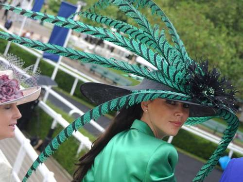 The statement hat par excellence! Racegoers attend day three of Royal Ascot at Ascot Racecourse on June 21, 2012 in Ascot, England. Getty Images.