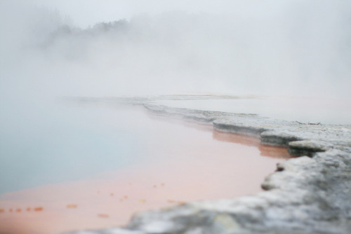 antarctics:  untitled by hannah.grace on Flickr.