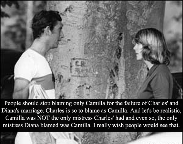 "(Post by Varya) ""People should stop blaming only Camilla for the failure of Charles' and Diana's marriage. Charles is so to blame as Camilla. And let's be realistic, Camilla was NOT the only mistress Charles' had and even so, the only mistress Diana blamed was Camilla. I really wish people would see that."" - Submitted by MrHarryWales"