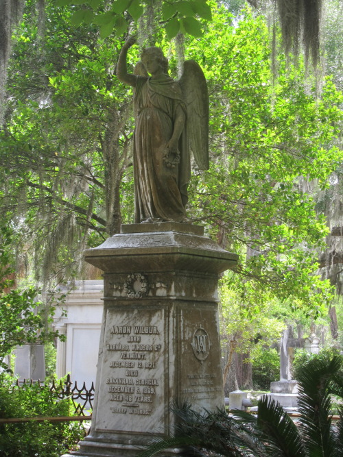 the-senator:  One of the monuments in Bonaventure Cemetery in Savannah, Georgia.  I love that place.